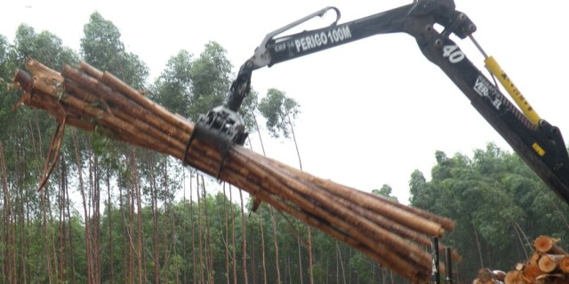 log pile with machine