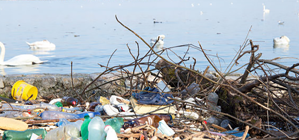 Article Wn View 2016 03 25 Trash In Worlds Oceans Threatens Wildlife Economy And Human